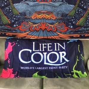 Life In Color Flag